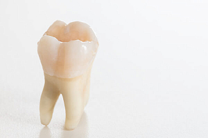 Размер зубов – норма и отклонение