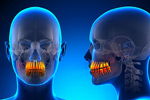 Строительный материал для зубов