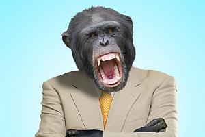 Зачем нашим предкам нужны были зубы?